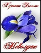 "Екатерина Мишина ""Хроники Беллы. Новолуние"""