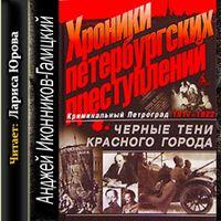 Анджей Иконников-Галицкий «Хроники петербургских преступлений»