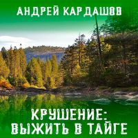 Андрей Кардашов «Крушение: Выжить в Тайге»