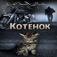 Дмитрий Белов «Котенок»