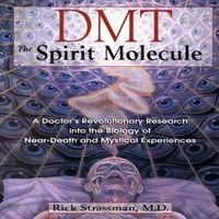 Рик Страссман «ДМТ. Молекула духа»