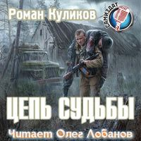 Роман Куликов «Новая зона. Цепь судьбы»