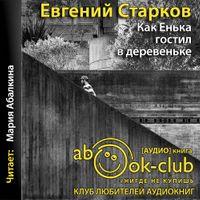 Евгений Старков «Как Енька гостил в деревеньке»