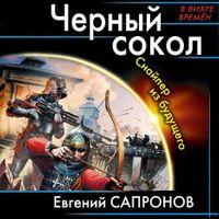 Евгений Сапронов «Черный сокол. Снайпер из будущего «