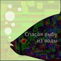 Егор Балашов «Спасая рыбу из воды»